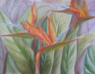 Bird of Paradise, Watercolor, Roz Claffey