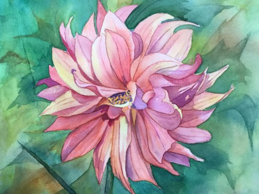 Dahlia, Watercolor, Alice Healy