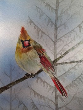 Female Cardinal, Alice Healy, Watercolor