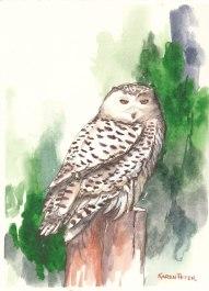Karen Peter, The Guardian, Watercolor