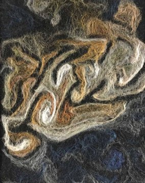 Penny Bamford, Jupiter Storm Track, Needlefelting