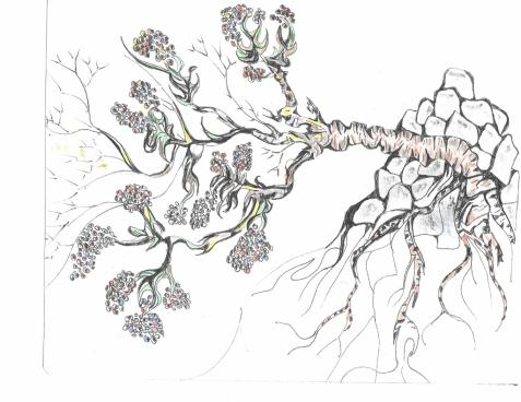 Tree From Rocks, Earl Dyer