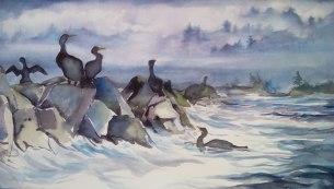 Comorants at Work, Watercolor, Virginia Heaven
