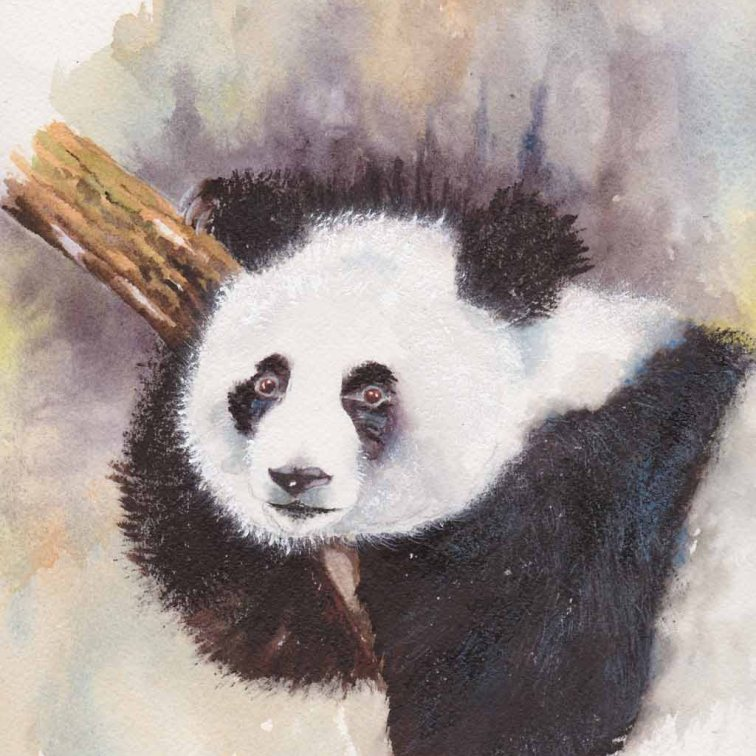 Karen Peter, From China With Love, Watercolor