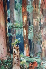 Carol McMIllan, Into the Woods, Watercolor