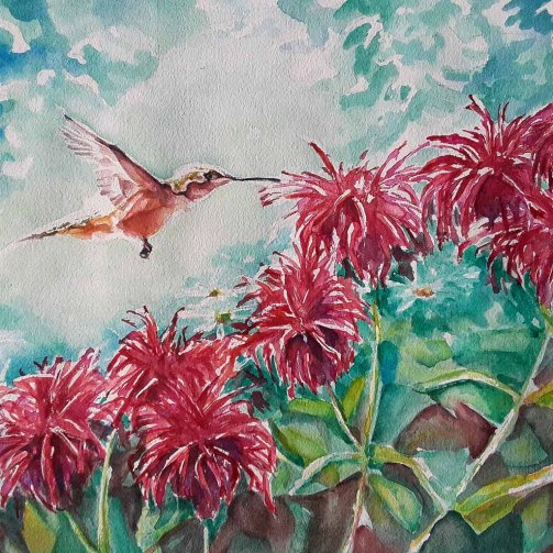 Sarah Lane, Hummingbird and Bergamot, Watercolor