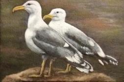kmccormickgulls