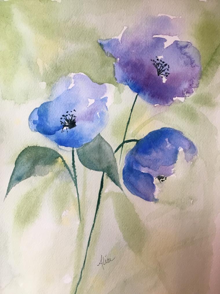 Alice Healy